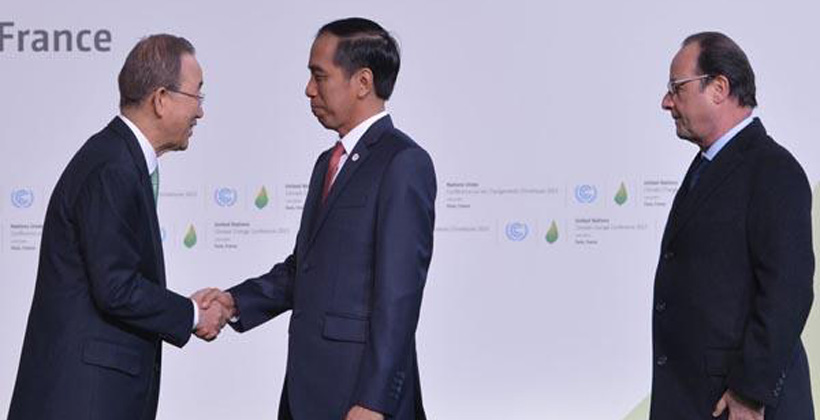 Indonesia Berkomitmen dalam Akselerasi Penggunaan Energi Terbarukan